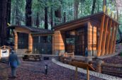Chabad Los Gatos Synagogue exterior render in forest